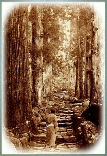MEIJI JAPAN -- Mountain Stairs Through the Old Forest
