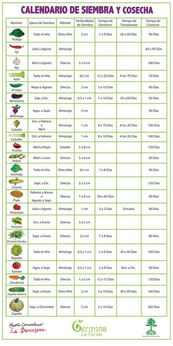 Germina La Florida: Calendario de Siembra y Cosecha (para sembrar en Chile, sur de América)