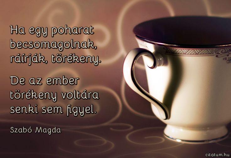 Szabó Magda gondolata az ember törékenységéről.