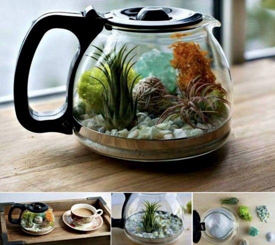 Upcycled Coffee Pot Terrarium Tutorial