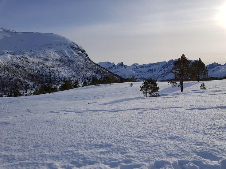 Norske fjell bader i sol. Fantastisk vakkert. Norwegian mountains in sunbathe. Glorious!