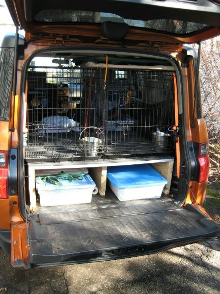 Dogs and Crates - Honda Element Owners Club Forum                                                                                                                                                                                 More