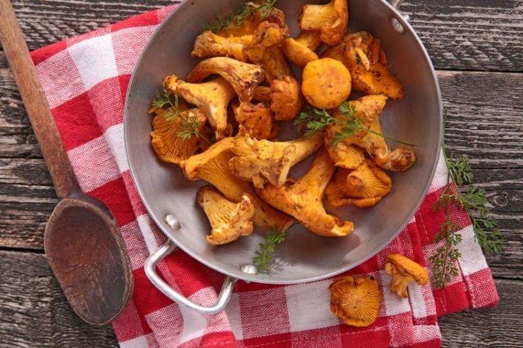 Kurki, a właściwie pieprzniki jadalne, to jedne z pierwszych grzybów - pojawiają się w polskich lasach już wczesnym latem. Wyróżnia je intensywny, pomarańczowo-żółty kolor i fakt, że naprawdę rzadko trafiają