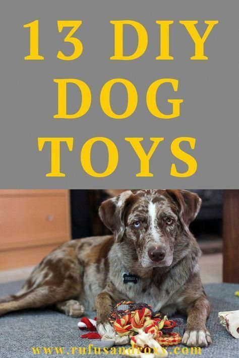 Best Cheap Dog Toys Under 5 Best Dog Toys Cute Dog Collars