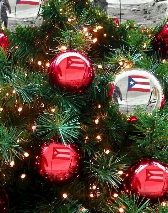 50 best puerto rico christmas images on pinterest for Acanthus decoration puerto rico