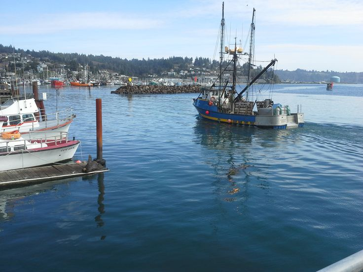 17 best images about fish boats and home on pinterest for Newport oregon fishing charters