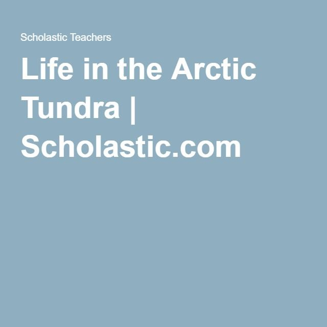 Life in the Arctic Tundra | Scholastic.com
