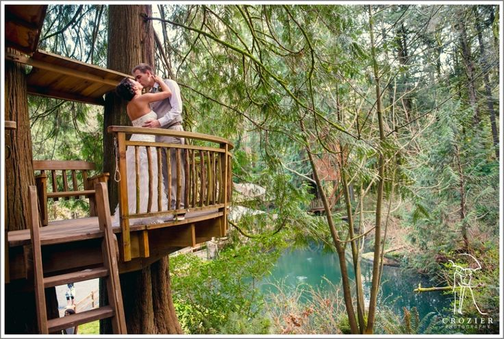 Love And Trees At Treehouse Point Crozier Photography