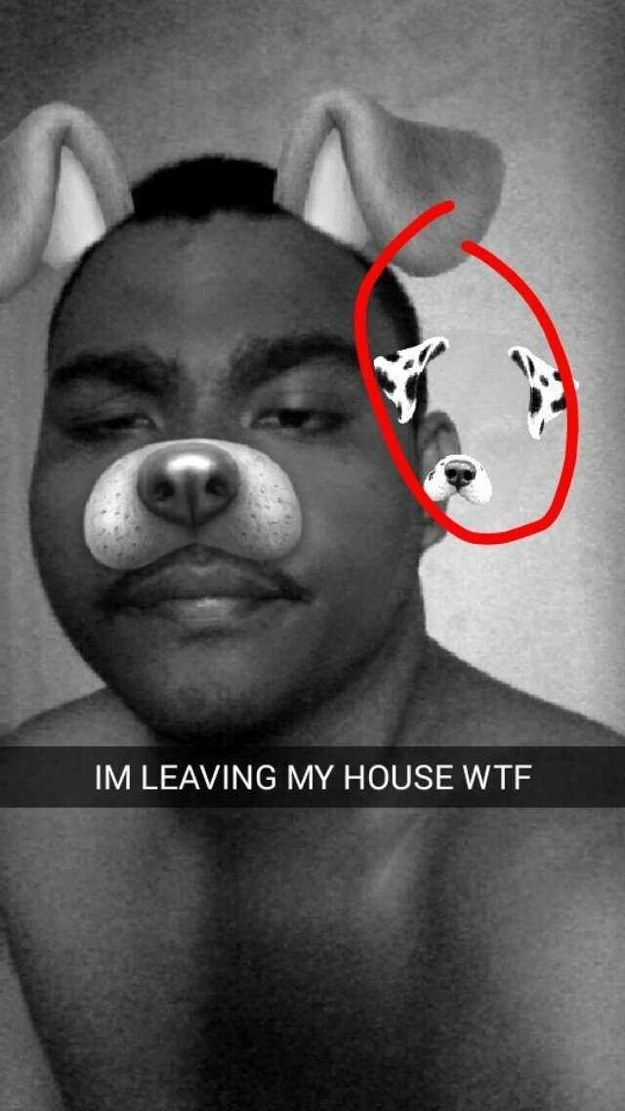 The dog filter devil: | 18 Fucking Creepy Pictures That'll Make You Believe In Ghosts