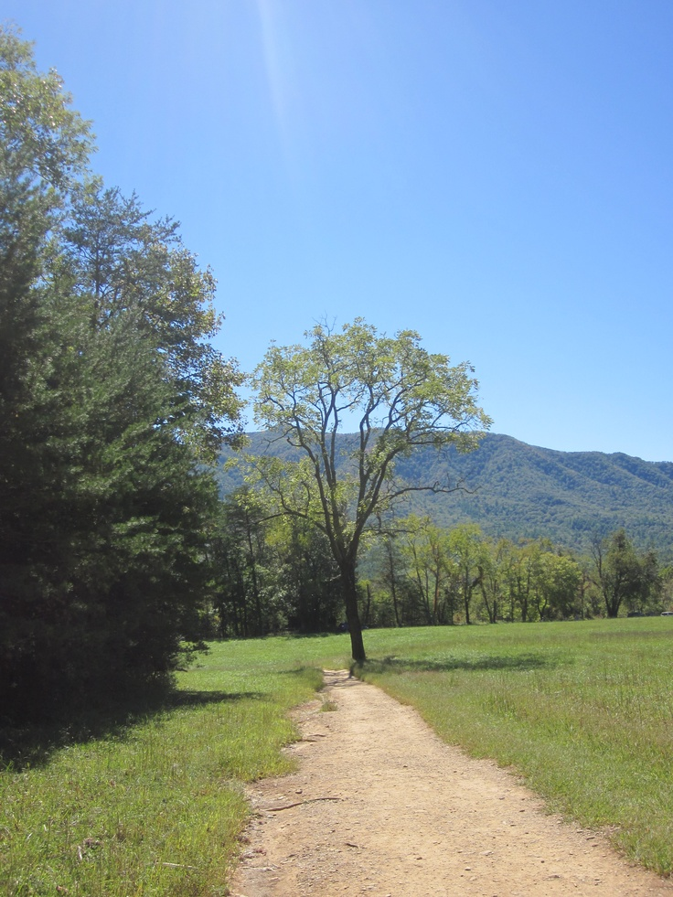 Cades Cove, Gatlinburg, TN - coupons in this link.... print out!