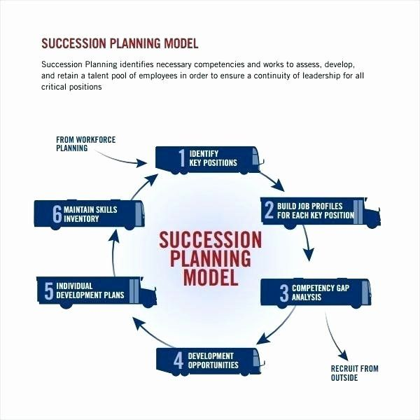 Succession Planning Template Free In 2020 Succession Planning