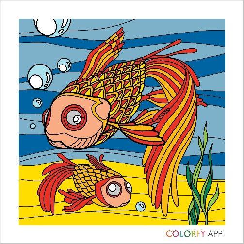 The sea fishes xdd Ryby morskie xdd
