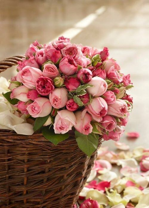 Basket of pink roses ~ Ana Rosa