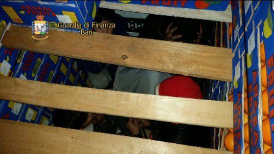 Lavoro Bari  Due siriani e due minorenni afgani sono sbarcati dalla Grecia viaggiando in un nascondiglio ricavato nella cella frigorifera del rimorchio carico di frutta...  #LavoroBari #offertelavoro #bari #Puglia Bari migranti nascosti tra le arance del tir: arrestati due camionisti