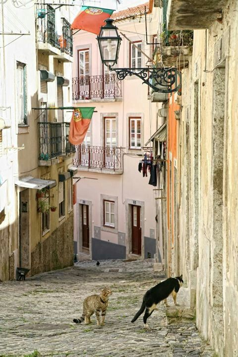 Alfama , Lisbon , PORTUGAL
