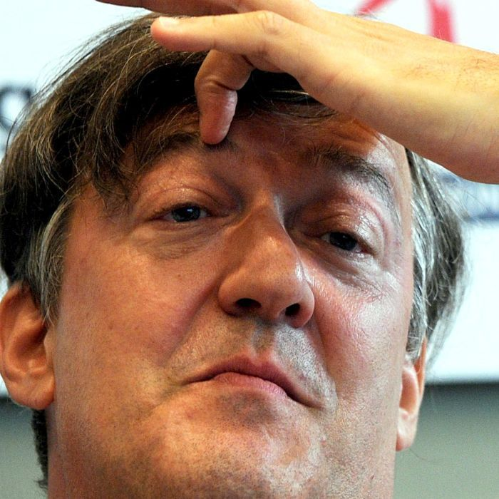 British actor Stephen Fry says he is very happy after confirming he plans to marry his 27-year-old boyfriend.