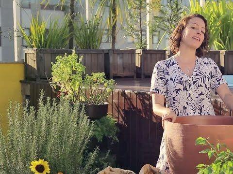 Minha Horta Desafio #2: Quero um canteiro com flores