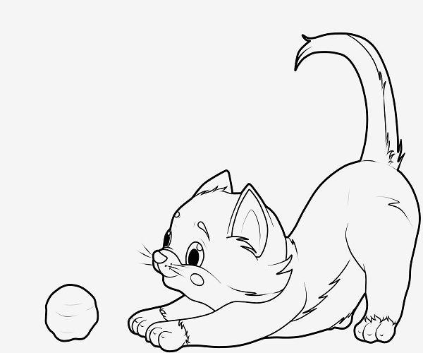 katzen ausmalbilder fur kinder