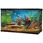 Grreat Choice® 10 Gallon Glass Aquarium