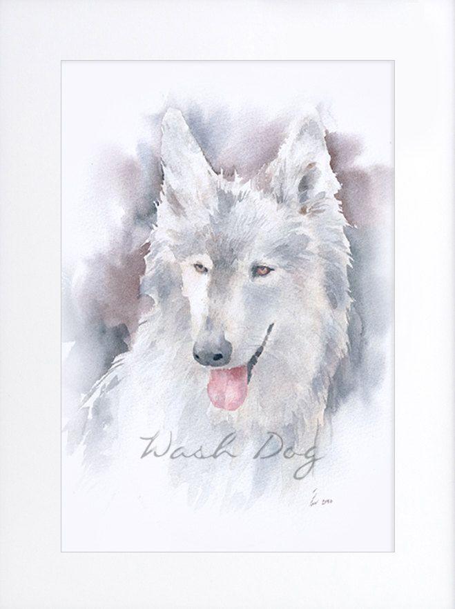White Siberian Husky print of original watercolor painting, Siberian Husky, Dog painting, Husky portrait,Husky watercolor,Gift for dog lover by WashDogBkk on Etsy