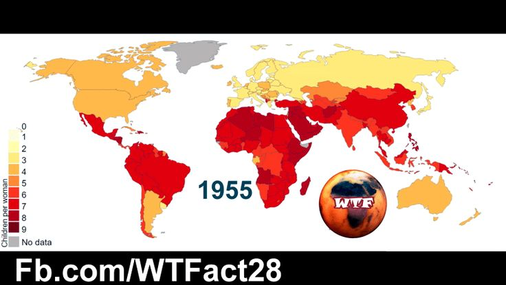 Total Fertility Rate of the World (1955 - 2015)