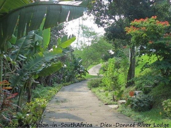 Beautiful gardens at Dieu-Donneé River Lodge. http://www.accommodation-in-southafrica.co.za/KwaZuluNatal/PortShepstone/DieuDonnee.aspx