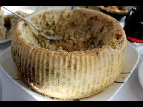 Why Would You Eat That? - Maggot-Filled Cheese aka Casu Marzu