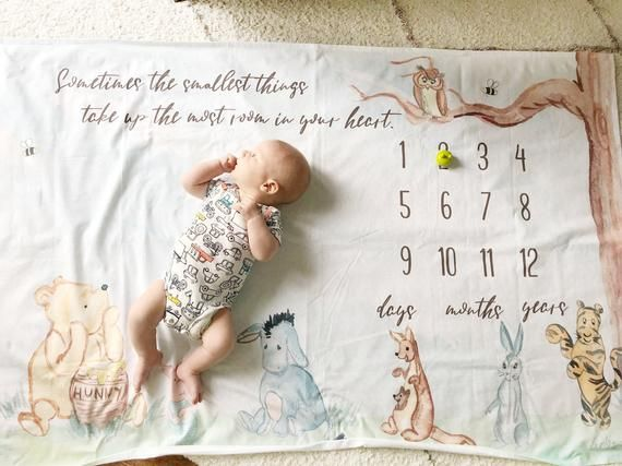 Classic Winnie The Pooh Personalized Milestone Blanket Baby Girl Boy Gender Neutral Monthly