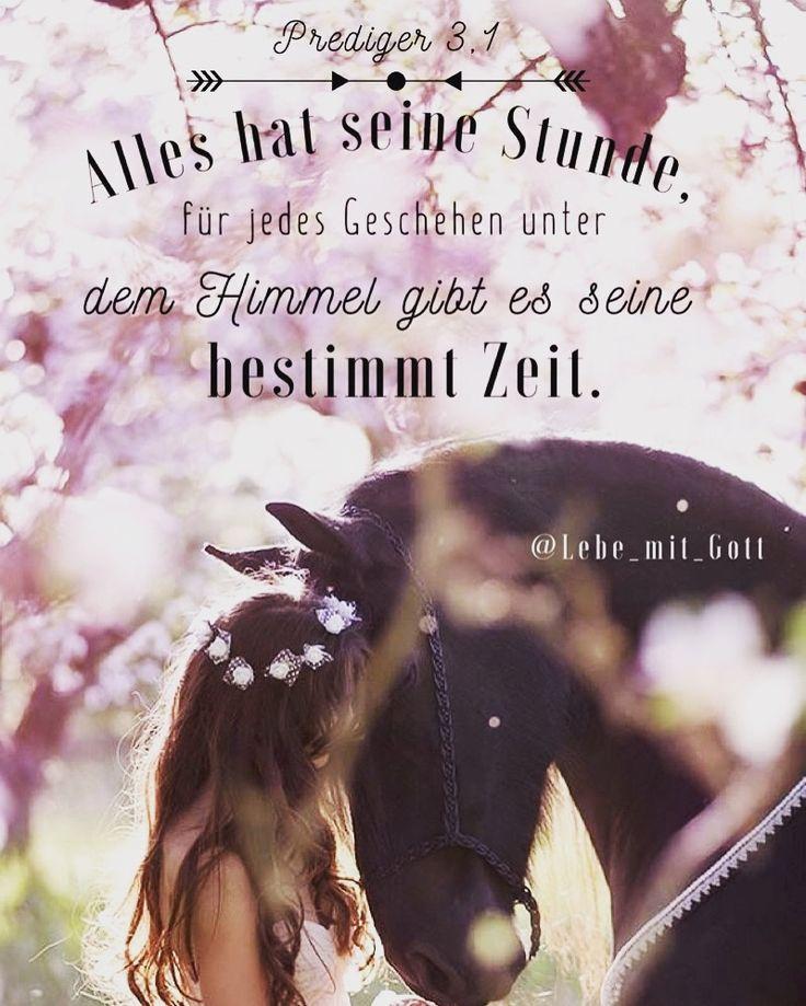 Gottes Zeit (punkt) ist immer die richtige  - der richtige ! - #Gott kommt spätestens rechtzeitig ! ♡
