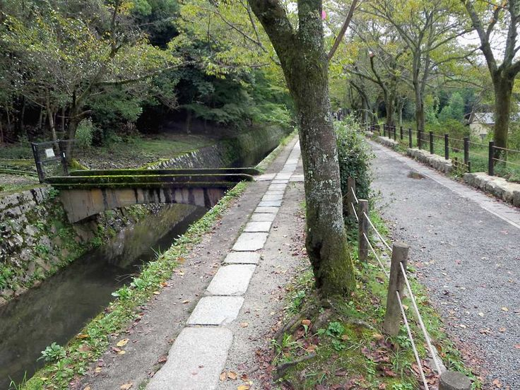 The tree-lined Path of Philosophy beside the Sosui Canal links several ancient temples in Kyoto, Japan.