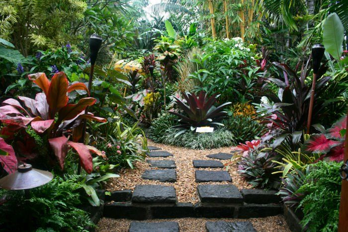 My dream garden....