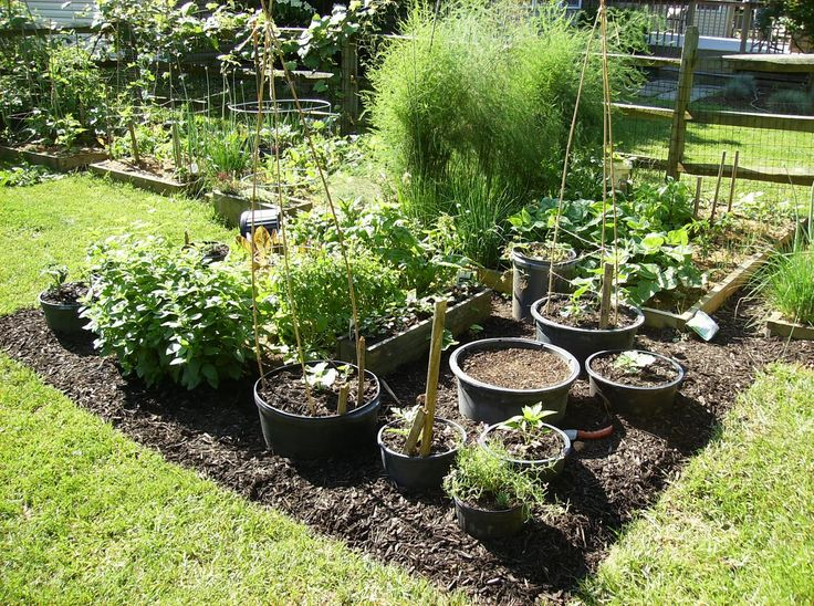 Small Vegetable Garden Design Ideas Part - 30: Small Vegetable Garden Ideas | ... Container Vegetable Gardening 29  September 2011 Vmt Garden
