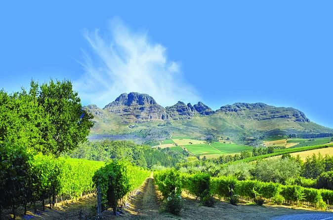 Cape Winelands Guided Day Tour from Cape Town A full day experience sampling the world famous Cape Winelands where you'll visit beautiful locations such as the Helshoogte Mountain Pass, the unique Stellenbosch University and experience 2 wine tastings!A superb day dedicated to celebrating the glorious grape, the exceptional winelands region, and the heavenly scenery. The area's rich with history, and you can't help but feel it as you move through the region to experience a win...