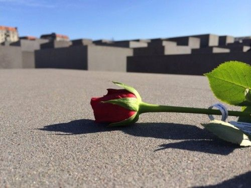rose-holocaust-memorial-berlin-photo