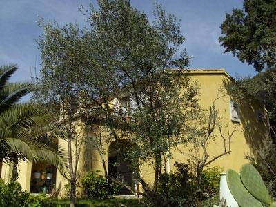 Maison avec potentiel pour chambres d'hôtes sur la baie d'Ajaccio