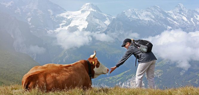 ~ Berner Oberland ~ Travel to Switzerland on a Rick Steves Best of Switzerland in 12 Days Tour. Day 8 is all yours for some of Switzerland's best hiking.