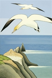 Gannets Above Muriwai by Don Binney, NZ. Acrylic on canvas (2003).