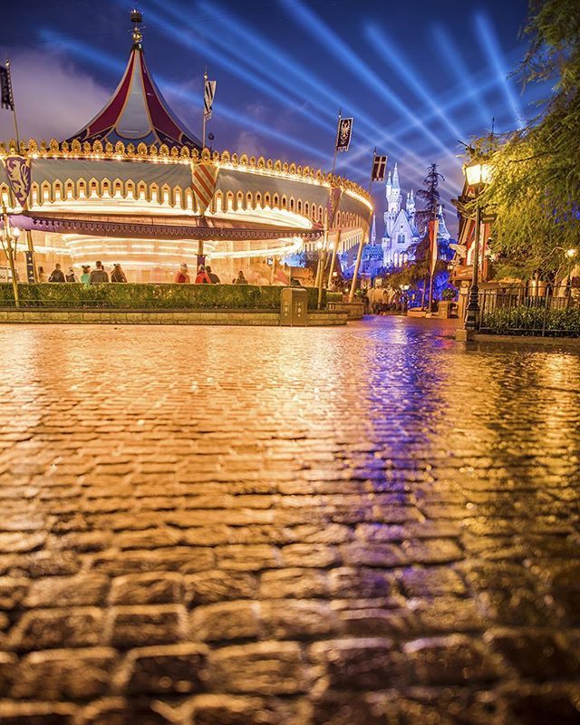 Follow the Yellow Brick Road. // This is one variation of a scene I captured with the Sigma 24-35 lens. See the other today on Disneytouristblog.com, and let me know which you prefer!