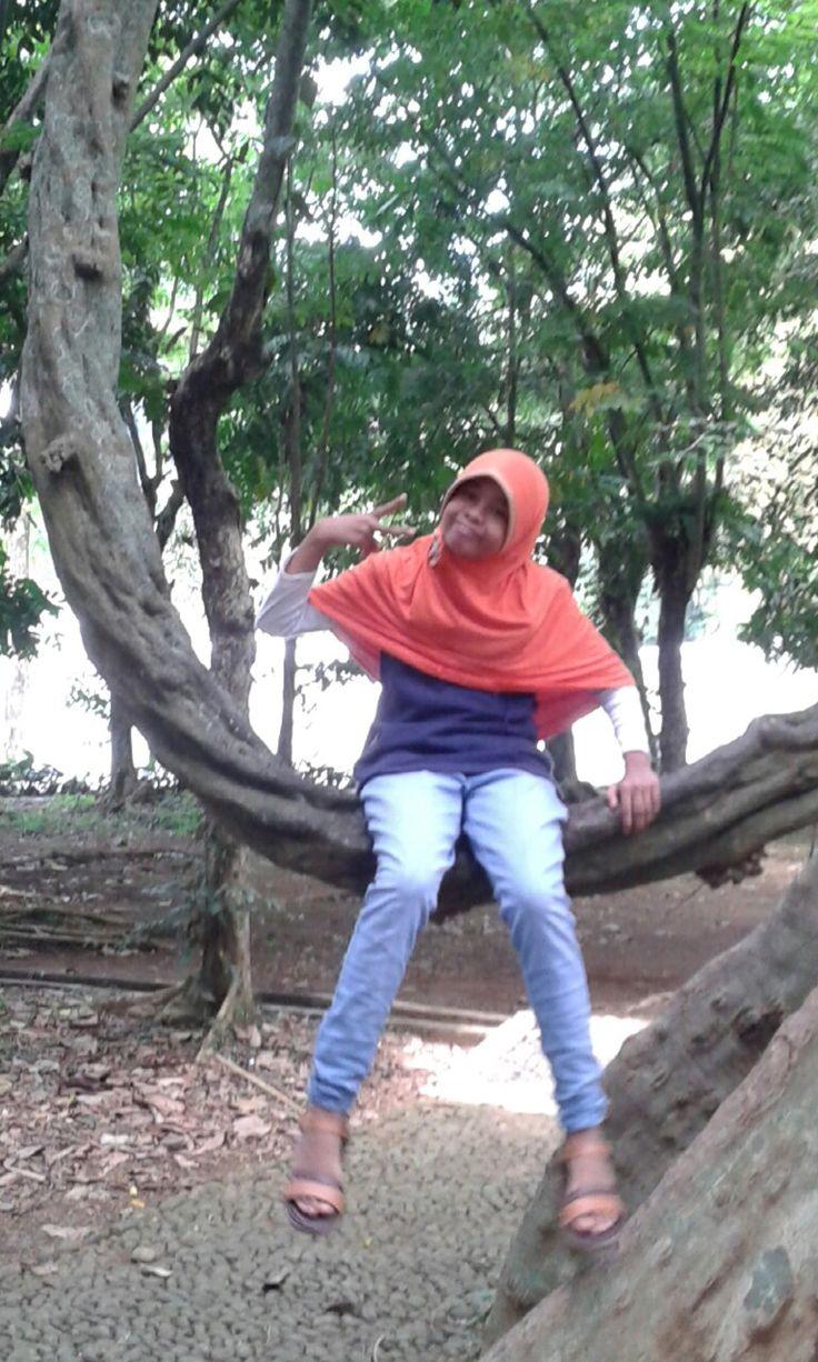 swing in kebun raya Bogor 20816
