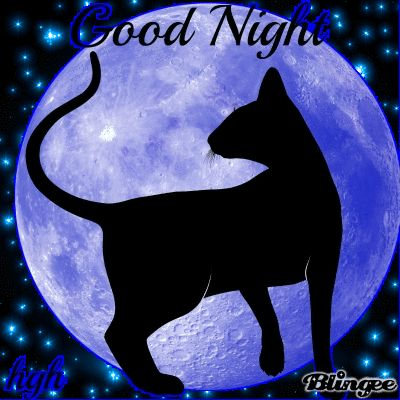 GOOD NIGHT  SWEET DREAMS              TO ONE ALL!!
