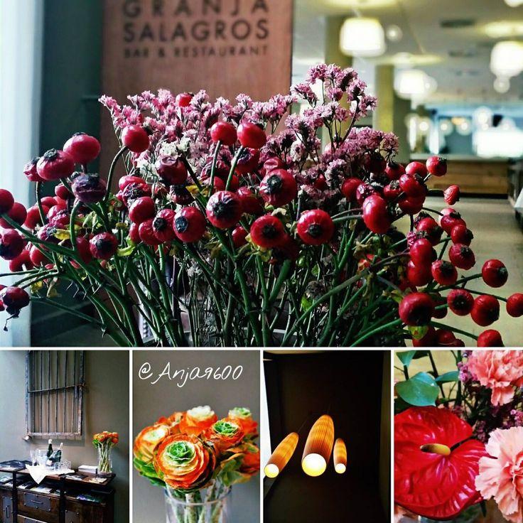 5 Sterne Bio-Hotel Mas Salagros* #visitmassalagros #biohotels #ecoexperience