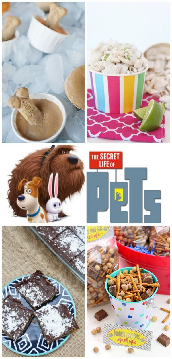 """In honor of the movie, """"The Secret Life of Pets"""" coming out this weekend, check out this fun pet themed recipe and craft roundup!"""