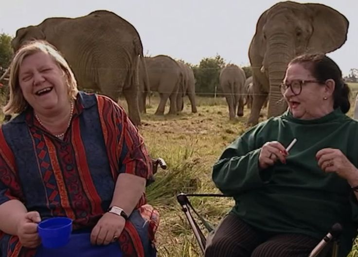 On Safari. Two Fat Ladies: Series Four, Episode Two. Location: Knowsley Safari Park, situated around Knowsley Hall on the Earl of Derby's estate in Lancashire. The recipes were Mustard Devilled Chicken; Chile Rellenos with Cherry Tomato Salsa; Lamb in Phyllo Pastry; and Apple Pan Dowdy.