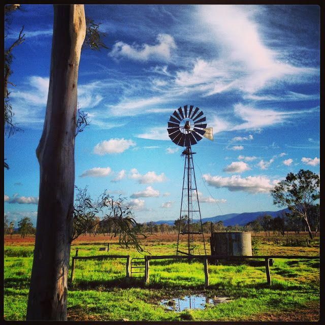 An Australian farm, windmills and gum, green grass and wooden fence - From the Verandah: 1800 Swamp