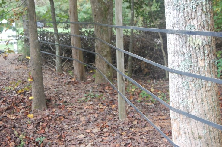 Rubber fencing, hmm... maybe...