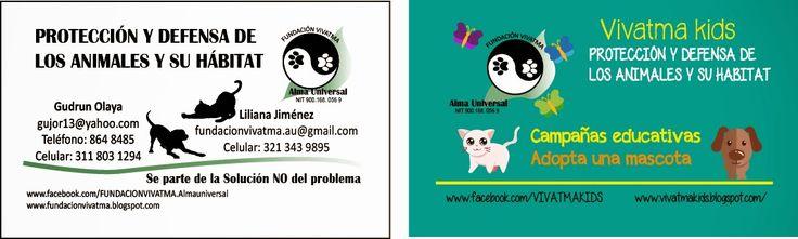 FUNDACION VIVATMA: Nuestras tarjetas!!!!