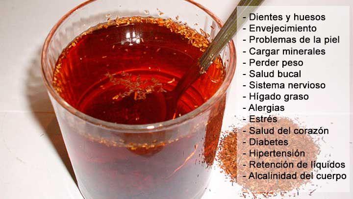 El té de rooibos es una bebida que se prepara a base de un arbusto de origen sudafricano. El nombre científico por el que se conoce esta planta es Aspalathus Linearis. Dicha infusión tiene muchas propiedades, por lo que sirve para tratar problemas digestivos, perder peso, aliviar el estrés, y mucho más. A continuación, enlistaremos algunos