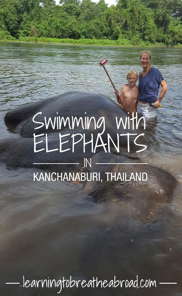 Swimming with Elephants in Kanchanaburi | Things to do in Kanchanaburi | Kanchanaburi Travel | Thailand Travel | Things to do in Thailand | Elephant Sanctuary in Thailand