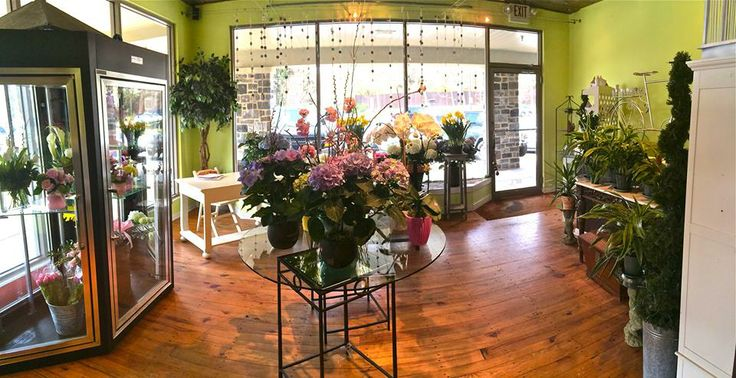 Our beautiful shop!