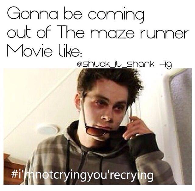 60cefabbc802fecd0210a44ca5e6ebce maze runner funny maze runner series 68 best the maze runner images on pinterest,Funny Maze Runner Memes